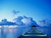 Meeresschutzgebiet: NewOcean